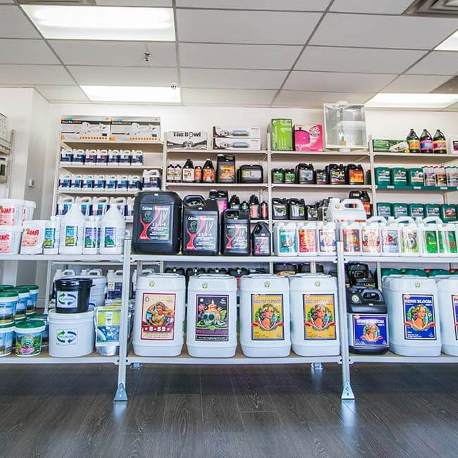 Photo of nutrients and supplements on display in store